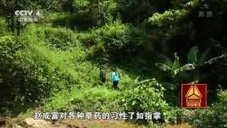 多彩贵州系列片(1)——泡在木桶里的村庄 【走遍中国20150715】720P