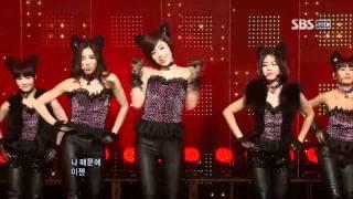 T-ara - Bo peep Bo peep (??? - ?? ??) @ SBS Inkigayo ???? 100110 MP3