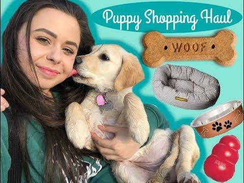Huge Puppy Haul Youtube