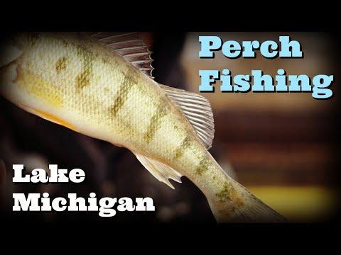 Chicago Perch Fishing - Lake Michigan - 87th Street Slip