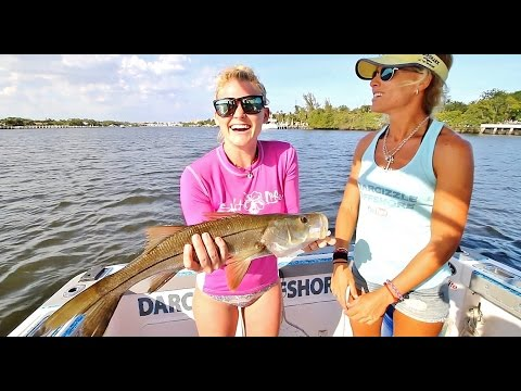 ONLY IN FLORIDA! Muttons, Kingfish, Snook, Egyptian Scad & Ribbonfish OH MY!
