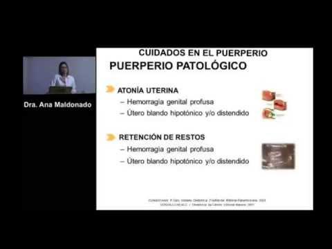 Cuidados En El Puerperio. Ponencia De La Dra. Ana Maldonado