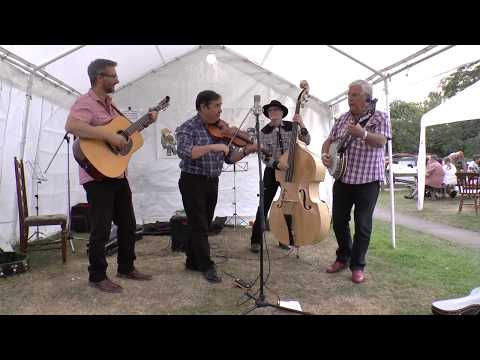 Helsby Mountain String Band at the Phoenix Bluegrass Weekend, July 2017