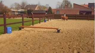 Silke springt met haar pony zonder zadel ;D