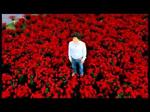 вот тебе и миллион алых роз