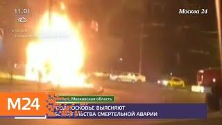 Смотреть видео Полицейские выясняют обстоятельства смертельной аварии в Подмосковье - Москва 24 онлайн