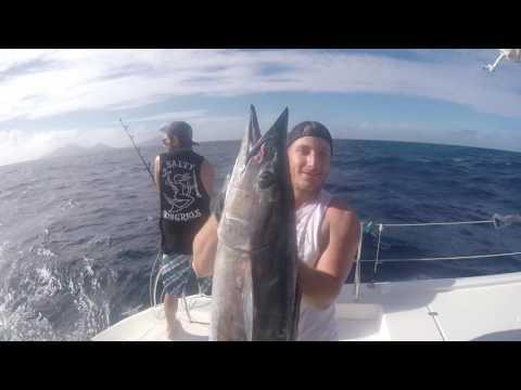 Spearfishing Vanuatu 2017