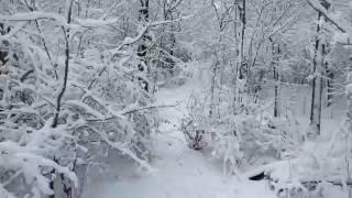 April 9th Winter Wonderland in Cleveland