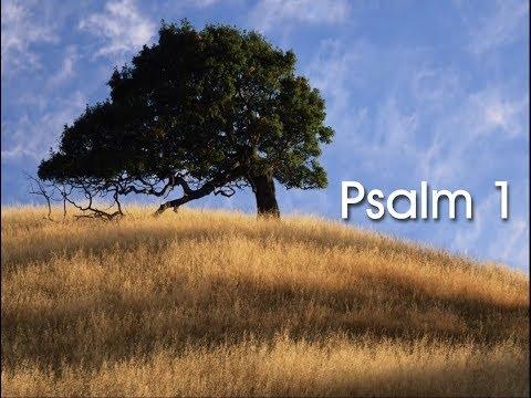 Psalm 1 - Sons of Korah