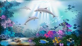 【著作権フリー】中北利男 癒しBGM 508曲より  お魚になったつもりで水中散歩~肩の力を抜いてリラックス~