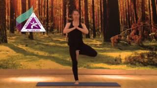 Yoga - Vrksasana (Tree Pose)