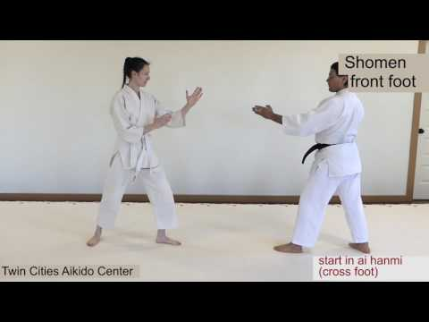 Techniques Explanation (Images,Video) | Twin Cities Aikido