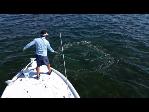 """""""How To"""" cast net video - pilchards in Biscayne Bay, Florida 