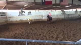 Dallas- Jared lesh cowhorses