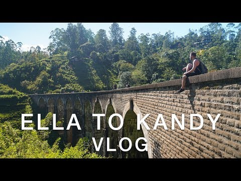 🇱🇰ELLA TO KANDY TRAIN RIDE VLOG 🇱🇰 | Travel better in Sri Lanka!