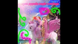 My little pony дружба это чудо 5 серия❤Дружба ведёт к победе
