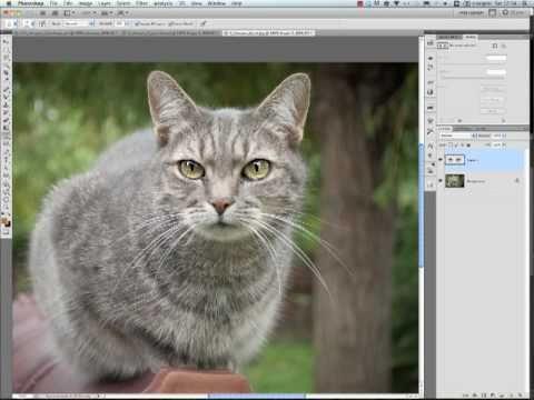 Photoshop CS5 - Élesítés videó letöltés