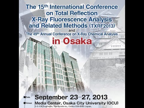 TXRF2013 Conference in Osaka: A personal vision