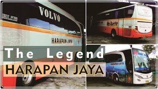 SANG LEGENDA Chasis Premium PO. Harapan Jaya | Volvo - Scania Matic [50fps]