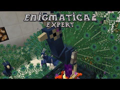 Enigmatica 2 Expert - COSMIC MEATBALLS [E99] (Modded
