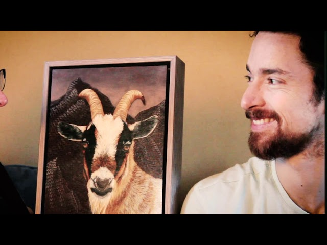 My human friends are goats
