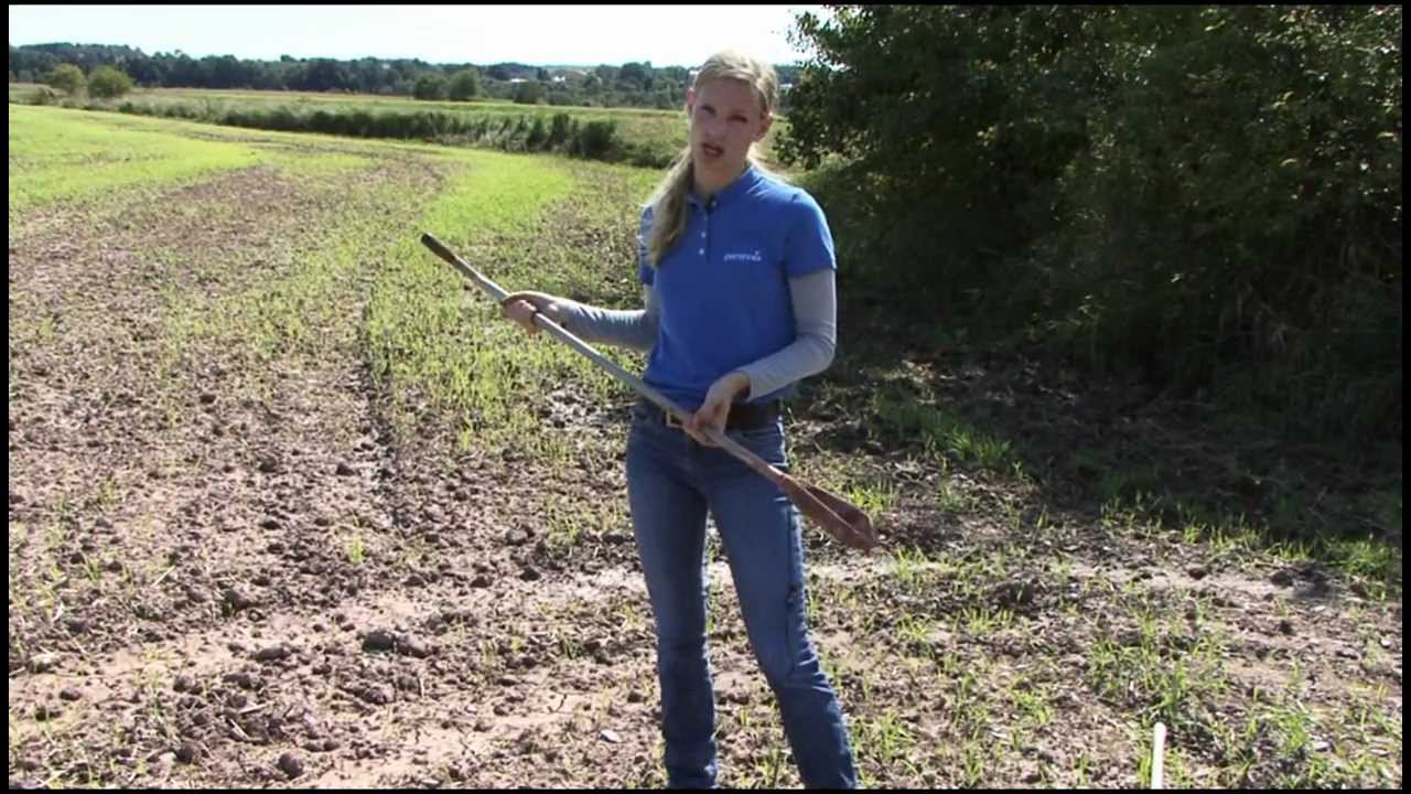 Collecting Soil Samples Part 1: Tools - YouTube