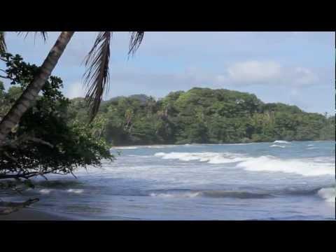 Bless I Soul - Conscious Digital Reggae - Puerto Viejo, Limon Costa Rica