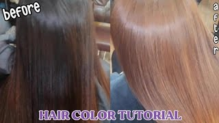 Hair Color Tutorial (im not professional im doing my bes Hair Work) No Bleaching