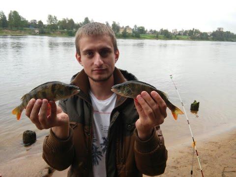 рыбалка спиннинг донка