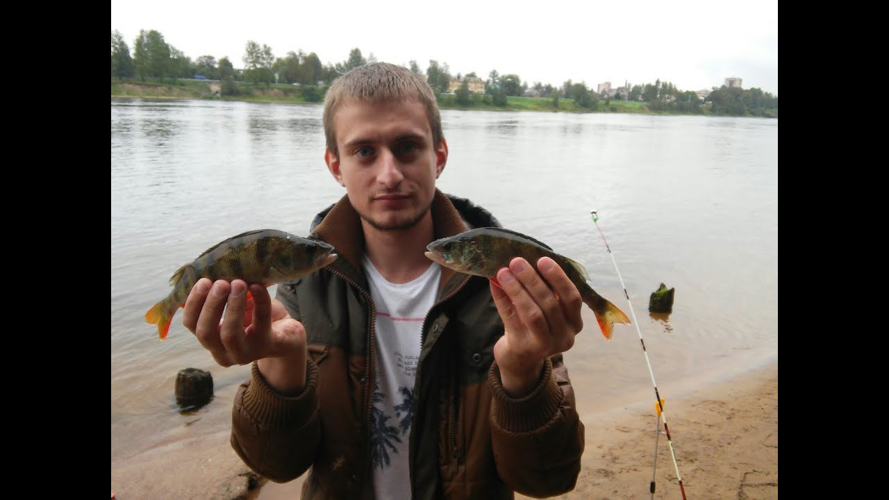 рыбалка в загубье 2016 питерский клуб рыбаков