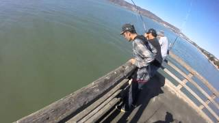 Candlestick Point Pier (San Francisco)