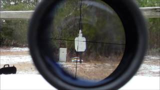 POV scope shooting Marlin model 60 22LR