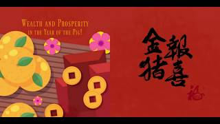 Year of the PIG 2019 - Happy Chinese New Year greetings