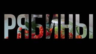 Витаминный напиток из ягод красной рябины