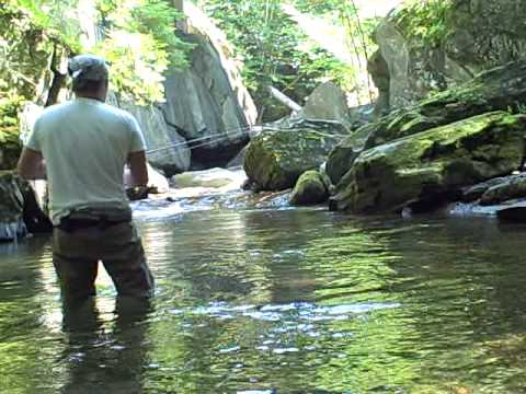 Gold brook rainbow vermont aug 15 2009 youtube for Vt fishing license