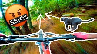 THE DOG WOULDN'T GET OUT OF THE F**KING WAY!   Riding in Salmo, BC!