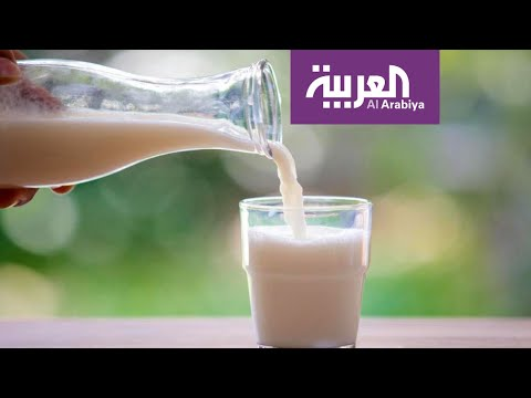 صباح العربية | ما البديل الصحي للحليب الحيواني؟  - نشر قبل 4 ساعة