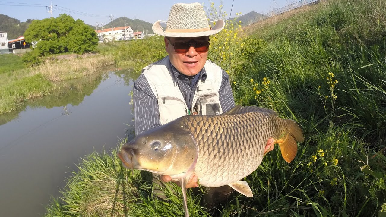 Fly fishing for Carp - Episode 6  (대물잉어 플라이낚시)
