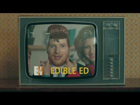 Ed Sheeran & Travis Scott - Antisocial (Sing-along Oficial)