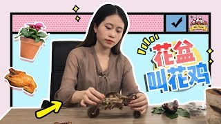 E15 Roasting Chicken in Flowerpot? More delicious than you ever thought | Cooking in office