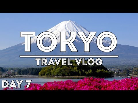 1 DAY MOUNT FUJI AND HAKONE TOUR /// TRAVEL VLOG: TOKYO, JAPAN //