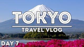 1 DAY MOUNT FUJI AND HAKONE TOUR /// TRAVEL VLOG: TOKYO, JAPAN //