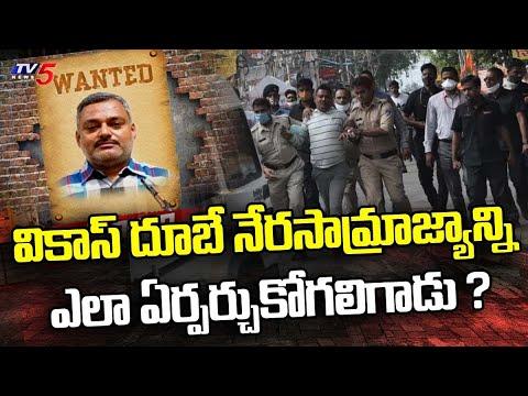 వికాస్ దూబే గ్యాంగ్ స్టర్ గా ఎలా ఎదిగాడు   Gangster Vikas dubey Crime History   TV5 News