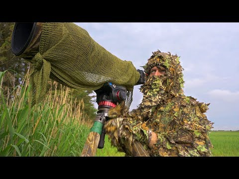 WILDLIFE PHOTOGRAPHY WHEN IT'S BEST | behind the scenes, birds, fox, thunderstorm, Nikon z6, 3D camo thumbnail