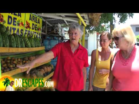 Cabrera Dominican Republic Grocery Store Tour - Part One
