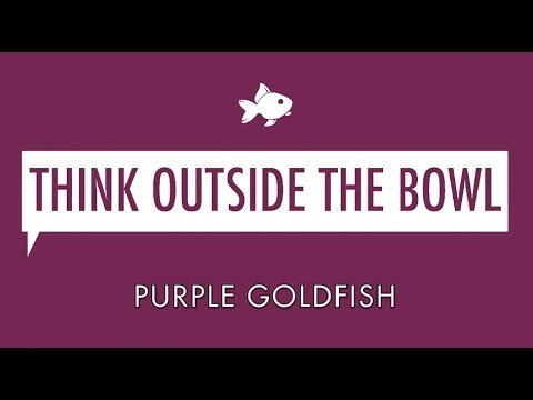 Stan Phelps Purple Goldfish 20 Minute Keynote