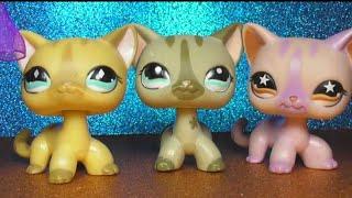 LPS: 55 моих  СТОЯЧЕК (Европейских кошек ЛПС)