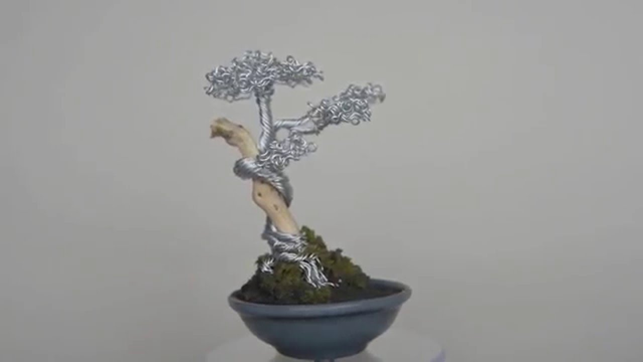 Wire Bonsai Tree With Jin Deadwood In A Blue Grey Pot Youtube Wiring