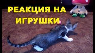 ✅ Реакция котенка на мягкие игрушки