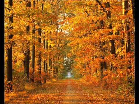 Natalie Cole  Autumn Leaves